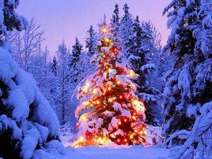 Friedvolle Weihnachten und ein gutes neues Jahr